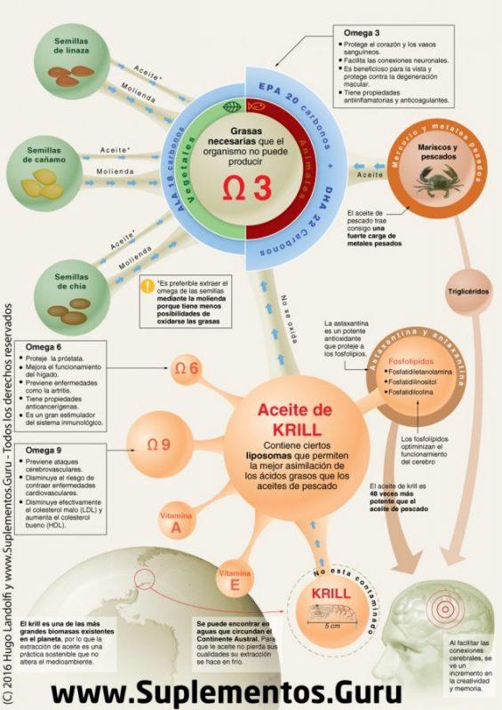 Infografía aceite de krill