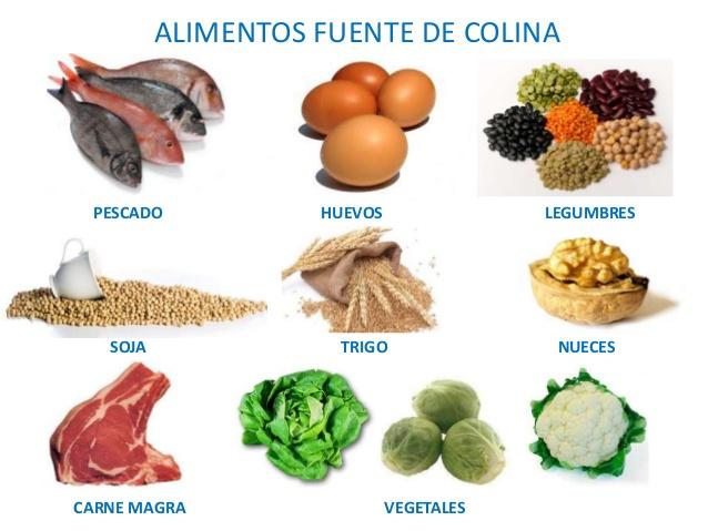 Fuentes de Colina en los alimentos