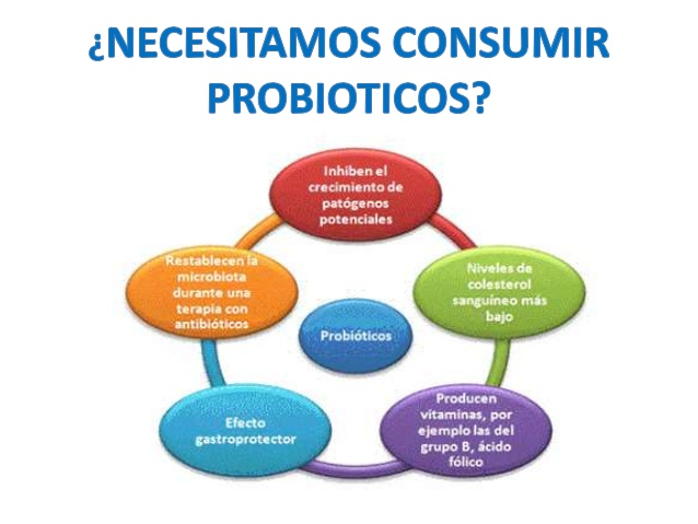 Importancia de los Probióticos