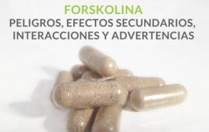 Suplemento dietario forskolina